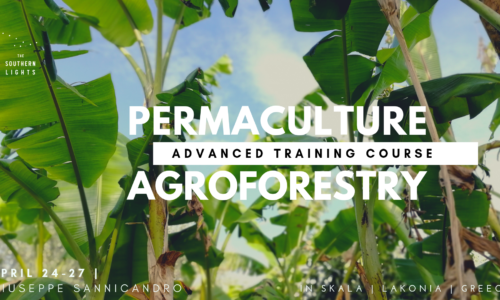 Permaculture & Food Forest ADVANCED